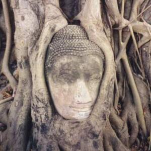 buddha sayuti 300x300 Аюттхая   древняя столица Сиама