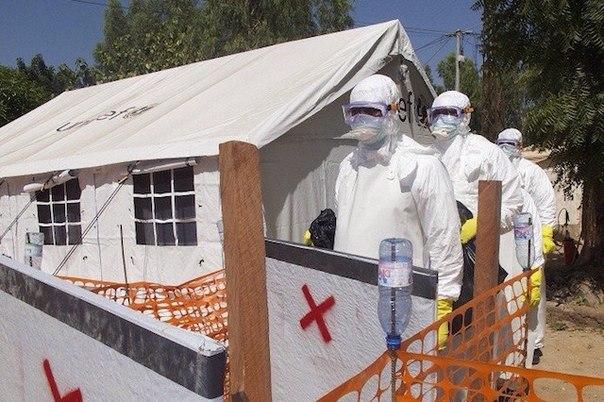 ssha nesut otvetstvennost za vspyshku bolezni vyzvannoi virusom ebola schitayut v kndr США несут ответственность за вспышку болезни, вызванной вирусом Эбола, считают в КНДР