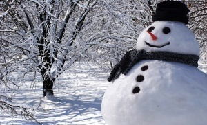 v yanvare sostoitsya vsemirnyi den snega В январе состоится Всемирный день снега
