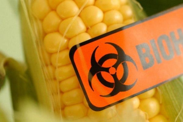 chyornyi spisok proizvoditelei gmo produktov Чёрный список производителей ГМО продуктов