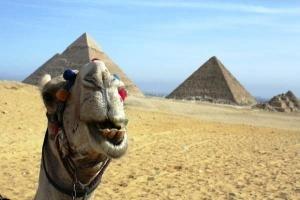 nekotorye magaziny egipta nachali prinimat rubli Некоторые магазины Египта начали принимать рубли
