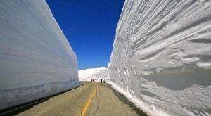 po snejnomu koridoru budet kursirovat avtobus s panoramnoi kryshei По снежному коридору будет курсировать автобус с панорамной крышей