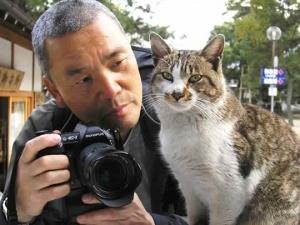usato hvostataya ekspoziciya otkroetsya v tokio Усато хвостатая экспозиция откроется в Токио