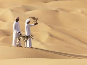 ambicioznyi abu dabi otkrytie luvra i krupnye festivali namecheny na 2016 god Амбициозный Абу Даби: открытие Лувра и крупные фестивали намечены на 2016 год