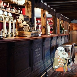 sobaki barmeny obslujivayut posetitelei londonskogo paba Собаки бармены обслуживают посетителей лондонского паба