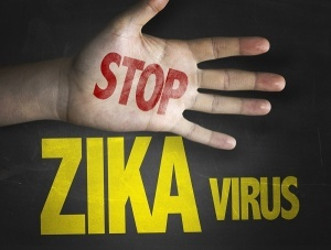 rospotrebnadzor predupredil o rasprostranenii virusa zika v singapure Роспотребнадзор предупредил о распространении вируса Зика в Сингапуре