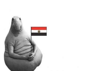 egipet planiruet prinyat 10 mln turistov Египет планирует принять 10 млн туристов