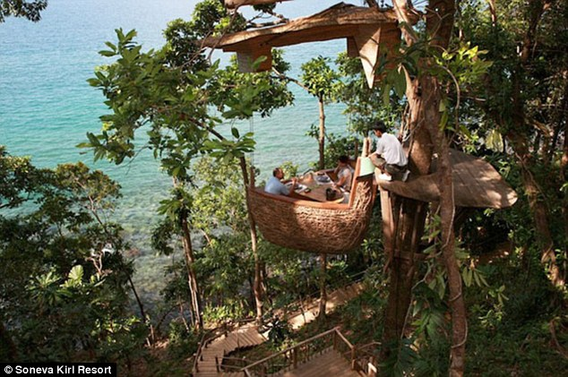 restoran tailanda predlagaet poujinat na verhushke dereva Ресторан Таиланда предлагает поужинать на верхушке дерева