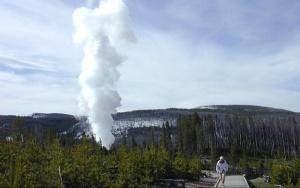 v ielloustoune probudilsya samyi bolshoi geizer planety В Йеллоустоуне пробудился самый большой гейзер планеты