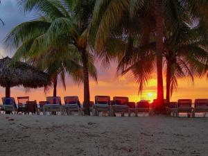 yamaika nabiraet ves na rossiiskom rynke Ямайка набирает вес на российском рынке
