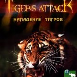 Discovery. Тигры атакуют (Tigers Attack)